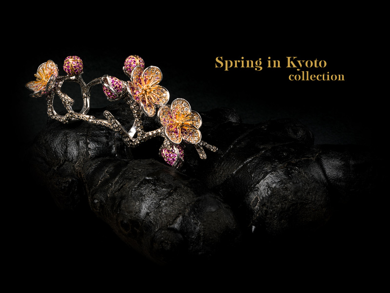 Project Category: spring in kyoto