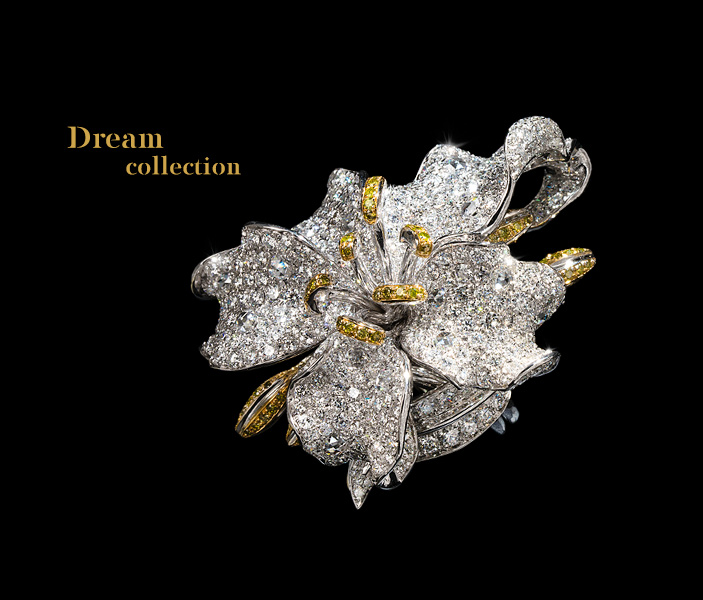 Project Category: dream